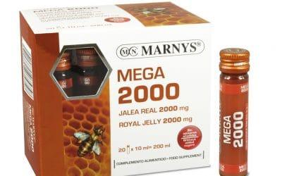 Mega 2000 – Marnys