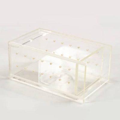 transportbox-bienen-plexiglas-api-zentrum