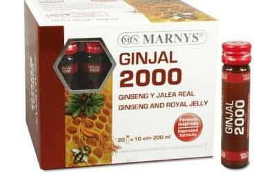 Ginjal 2000 – Marnys