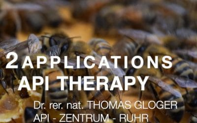 Api Therapy Web-Seminar Part 2 Applications 1