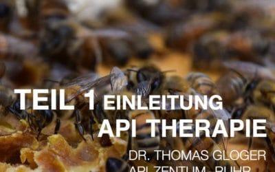 Teil 1 Api Therapie Web-Seminar Einleitung