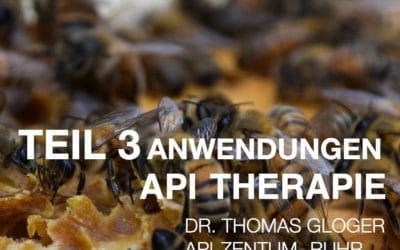 Teil 3 Api Therapie Web-Seminar Anwendungen 2