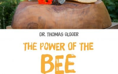The power of the bee – Buch